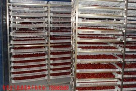 红枣烘干机 红枣烘干房 红枣烘干设备