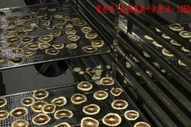 金橘片烘干机 金橘片烘干房 金橘片烘干设备