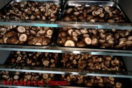 食用菌烘干机 食用菌烘干房 食用菌烘干工艺方案