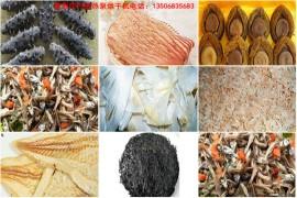 海产品烘干解决方案:海产品烘干机