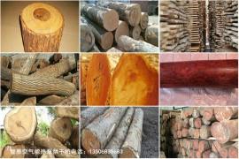 木材烘干解决方案