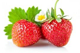 草莓烘干工艺