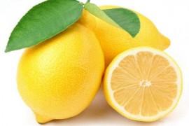柠檬烘干工艺,柠檬烘干技术