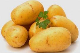土豆片烘干工艺,土豆烘干技术