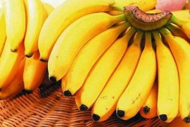 香蕉片烘干工艺,香蕉烘干技术