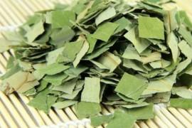 荷叶茶烘干工艺,荷叶茶是怎么烘干的