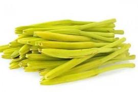 黄花菜烘干工艺,黄花菜烘干技术