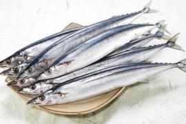 海鱼烘干工艺,海鱼如何烘干