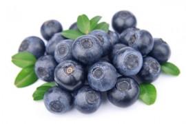 蓝莓烘干工艺,蓝莓烘干技术