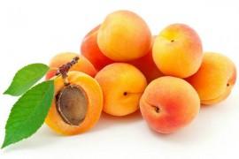 杏子烘干工艺,杏子烘干技术