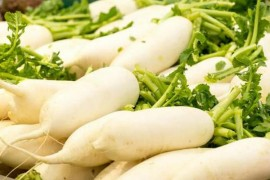 白萝卜烘干工艺,白萝卜烘干技术