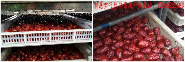 红枣烘干机