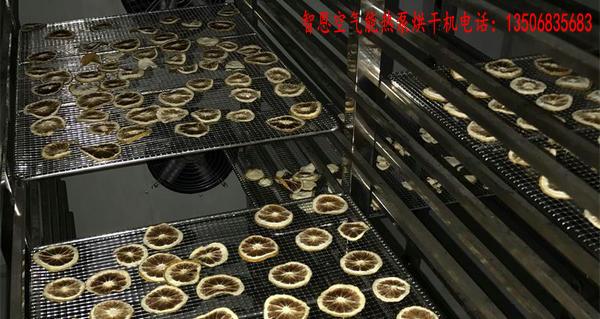 金橘片烘干机