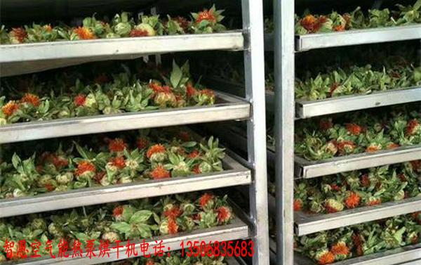 藏红花烘干机