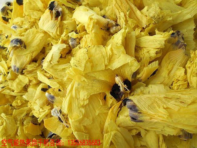 黄蜀葵热泵干燥