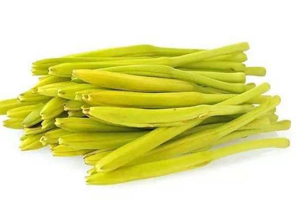 黄花菜烘干工艺